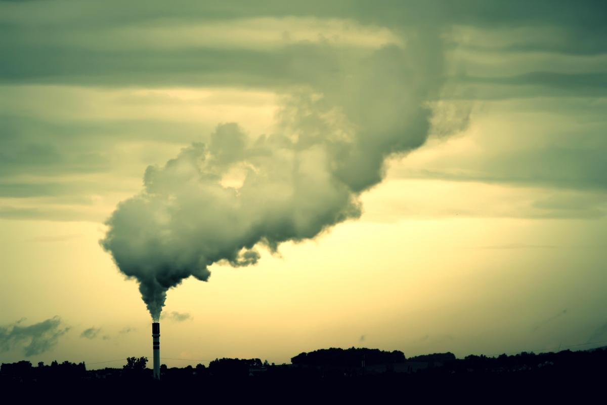 Минэнерго хочет стимулировать производство энергии из биотоплива нулевым эконалогом