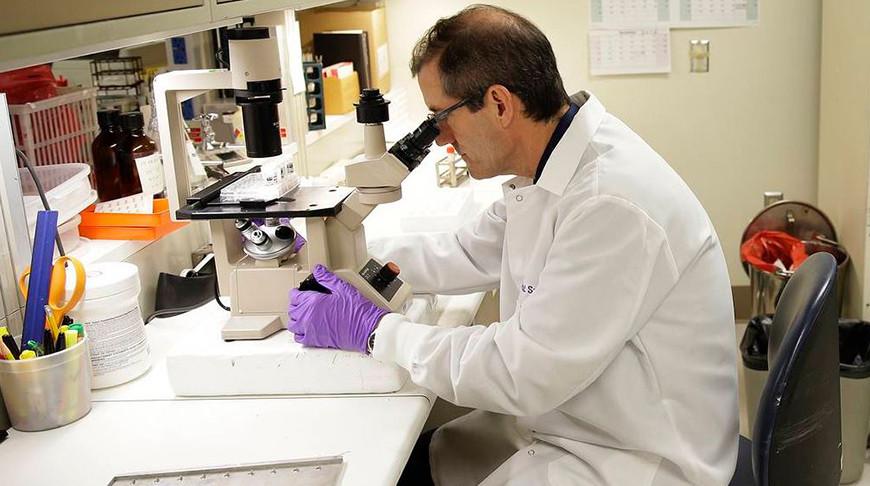 Бельгийские биологи назвали лекарства для борьбы с раковыми клетками