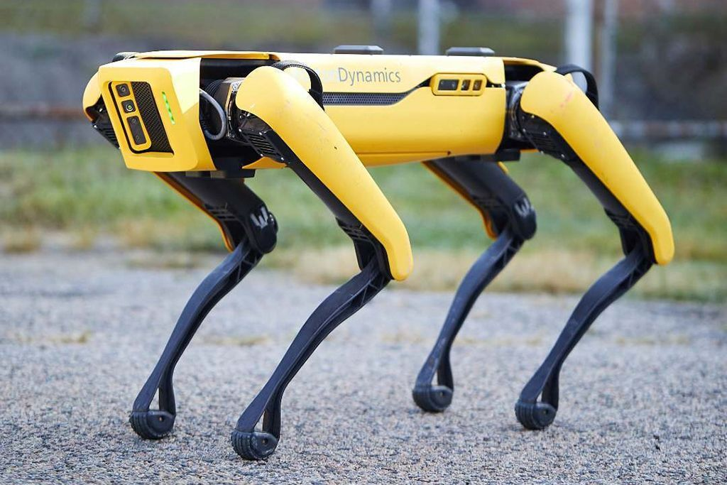 Знаменитого робота-собаку превратили в охранника