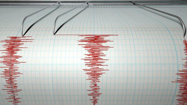 У побережья Камчатки произошло землетрясение магнитудой 4,0