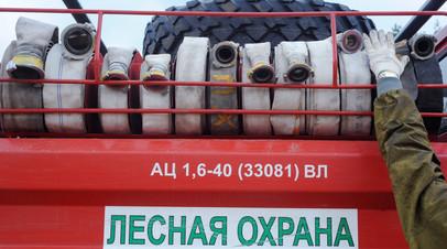 В России за сутки ликвидировали 92 лесных пожара