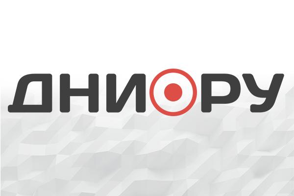 Украинские диверсанты убили пять ополченцев ЛНР