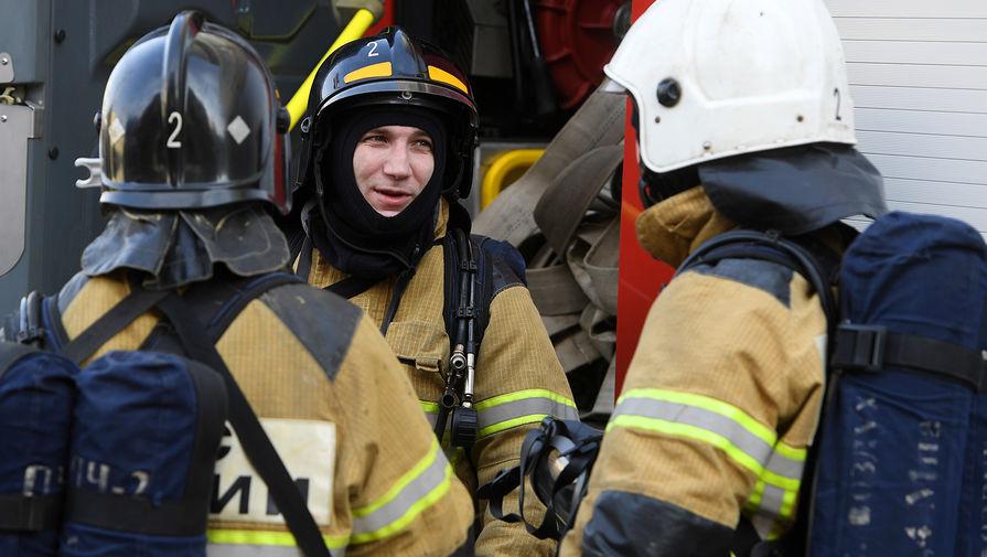 В Татарстане пожарные вытащили из горящей квартиры кота