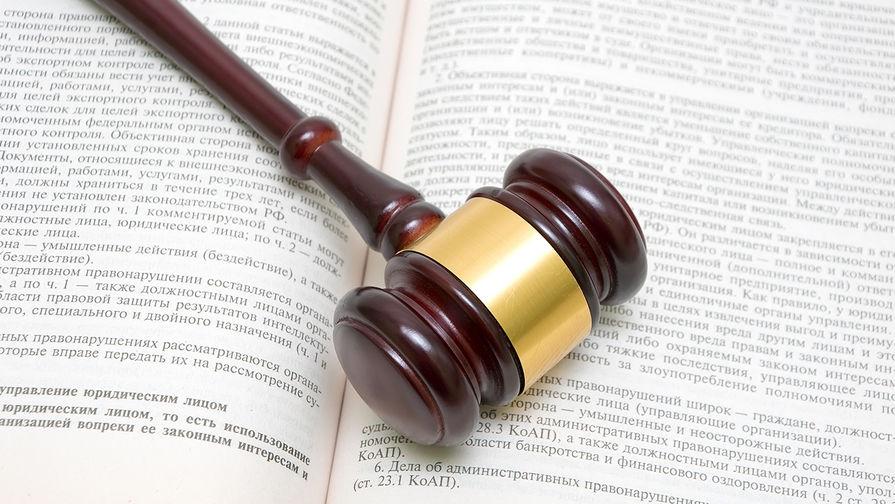 Тете Дмитрия Гудкова предъявили обвинение в нанесении ущерба на 1 млн рублей