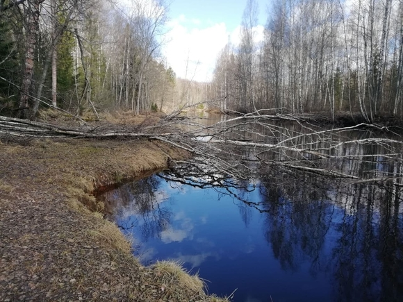 Пропавший в Татарстане мальчик погиб
