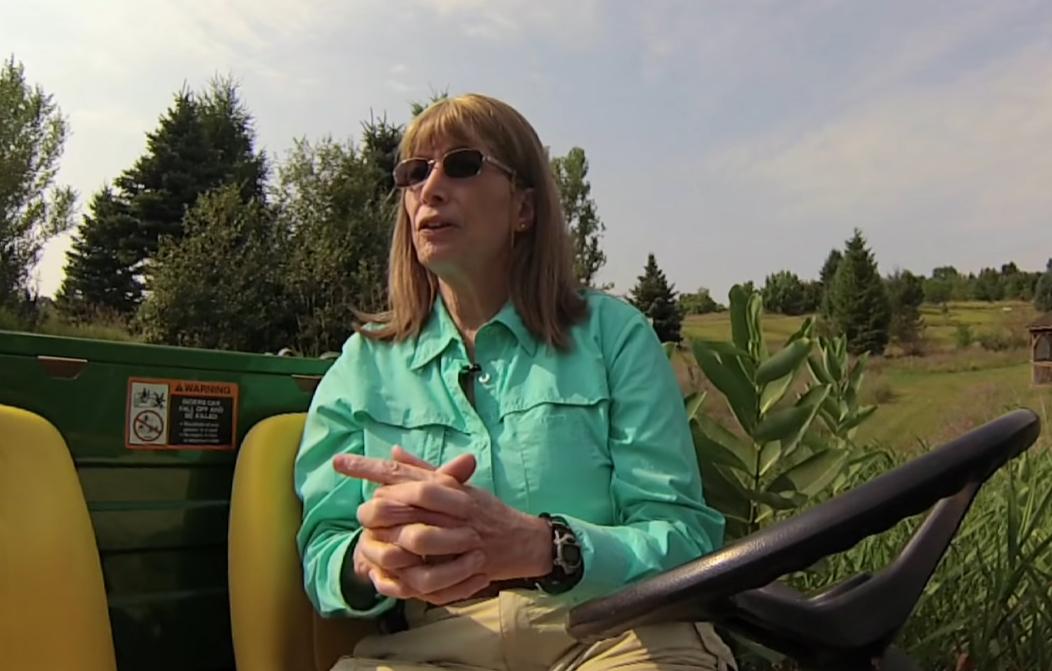 IBM извинилась перед уволенной 52 года назад трансгендерной женщиной
