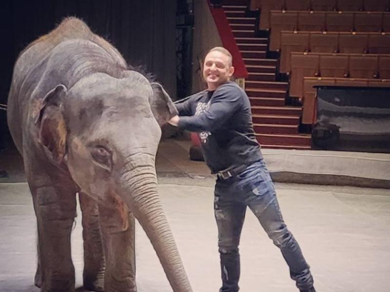 Запашный честно рассказал о судьбе старых цирковых животных