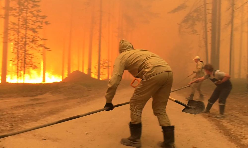 Вблизи населённых пунктов в Карелии действуют два природных пожара