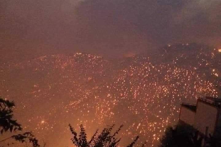 Не менее 25 военнослужащих погибли в Алжире во время тушения лесных пожаров